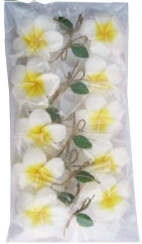 Floating Candles Flower 10 Prices in 1 Set (Plumeria) by Darunee Shop (Image #1)'