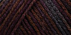 Caron C9700P-9 Simply Soft Paints Yarn - Sticks & Stones