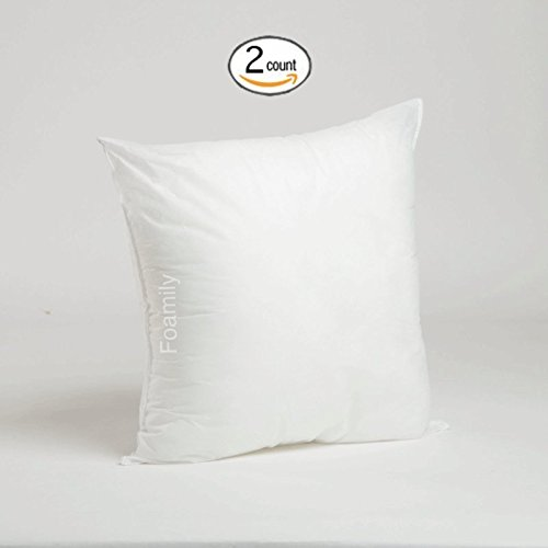 Set of 2 – 20 x 20 Premium Hypoallergenic Stuffer Pillow Insert Sham Square Form Polyester, Standard / White – MADE IN USA
