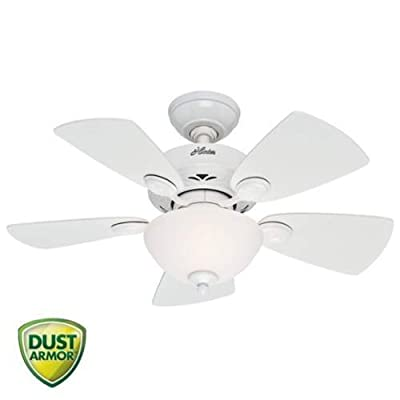 Hunter Fan Company Watson 34-Inch Ceiling Fan with Five Blades and a Light Kit