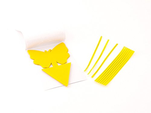 yellow-dual-sticky-fly-traps-for-gnat-whiteflies-fungus-gnats-small-insects-houseplant-eco-friendly-
