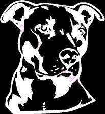 pitbull window decal - 2