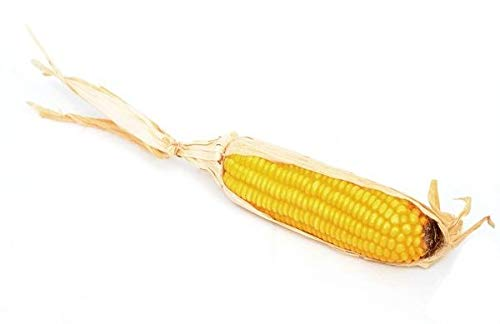 Artificial Corn on the Cob - 35cm x 4cm, Yellow JustArtificial