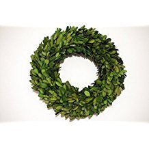 Preserved Boxwood Wreath 12 in by Tradingsmith