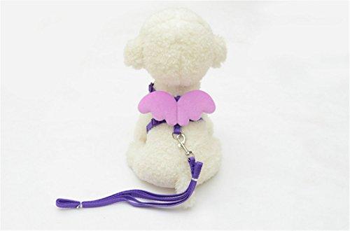 [Adjustable Pet Chain,Hemlock Angel Wing Puppy Dog Suit Collar Cloth (XS, Purple)] (Diy Costumes Kids)