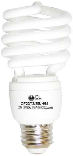 Goodlite G-20305 23-Watt CFL 100-watt Replacement 1600-Lumen T2 Spiral Light Bulb with Super Long 12,000 Hour Life, Super White