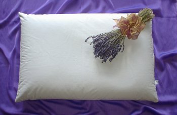 Beans72 Organic Aromatherapy Buckwheat Pillow - Queen Size (20 inches...