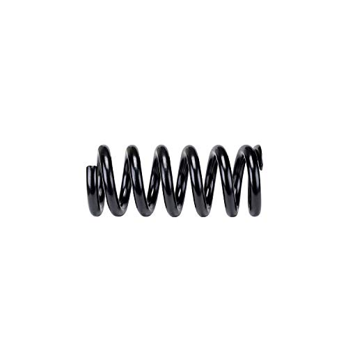 (SSC-21 | SuperCoils for Dodge RAM 2500|3500)