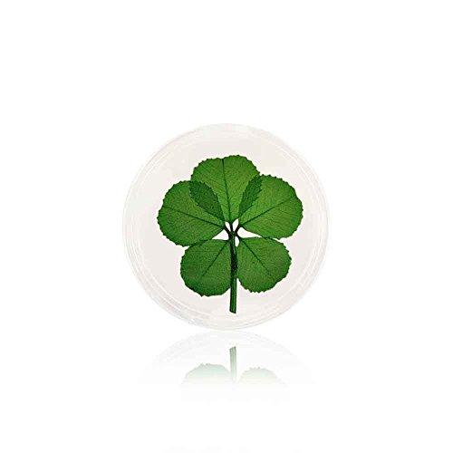 5 Leaf Clover Good Luck Pocket - Tokens Online Gift