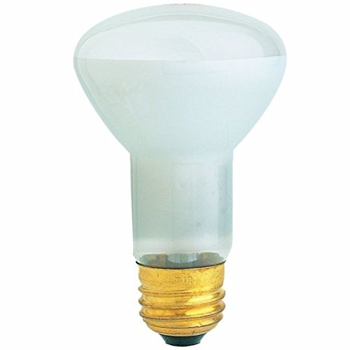 100 Watt Incandescent Flood Light Bulb in US - 6