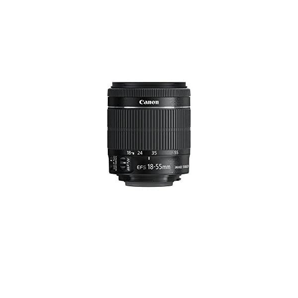 RetinaPix Canon EF-S 18-55mm f/3.5-5.6 is STM Lens