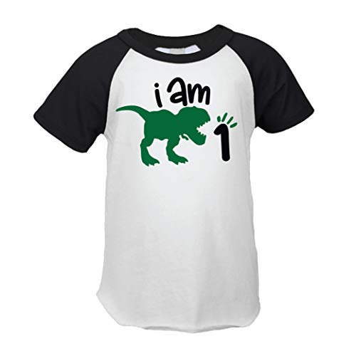 One Birthday Dinosaur Shirt for Boys, Short Sleeve First Birthday Dinosaur Outfit (12 Months) Black -