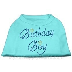 Mirage Pet Products 16-Inch Birthday Boy Rhinestone Print Shirt for Pets, X-Large, Aqua by Mirage Pet Products