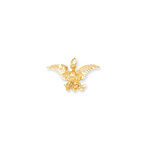 ICE CARATS 10kt Yellow Gold Eagle Pendant Charm Necklace Bird Fine Jewelry Ideal Gifts For Women Gift Set From Heart Eagle Pendant 10kt Gold Jewelry