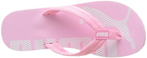 Unisex White Puma Prism Chanclas Flip V2 Pink Rosa puma Adulto Epic 13 rvqIvx4