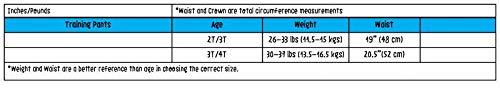 Mutandine da Apprendimento per Vasino - Set Mutandine Lavabili Bimba 3T-4T 6