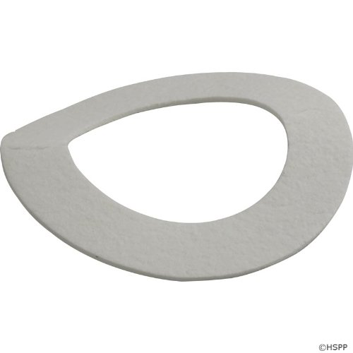 Jandy Mounting (Zodiac R0329900 Gasket with Blower Mounting Hardware Replacement for Select Zodiac Jandy LX/LT Pool and Spa Heaters)