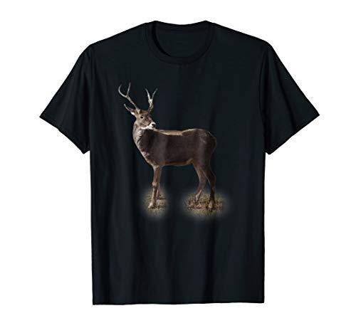 (Deer Hunting Buck Vintage Graphic)