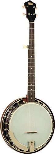 Recording King RK-R15-BR Rambler Resonator Banjo