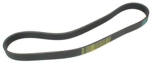 ContiTech Multi Rib Belt W0133-1637059-CON