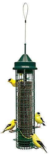 (Squirrel Buster Finch Squirrel-proof Bird Feeder w/4 Metal Perches & 8 Feeding Ports, 2.4-pound Thistle/Nyjer Seed Capacity)