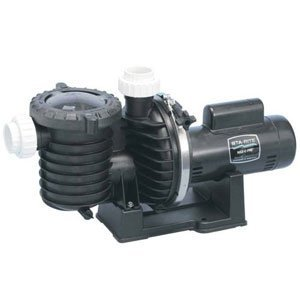 Pentair Sta-Rite P6RA6E-205L Max-E-Pro Standard Efficiency Single Speed Up Rated Pool and Spa Pump, 1 HP, 115/230-Volt