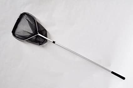 Pond Fish Net 1.8m Telescopic Handle 45 cm Head