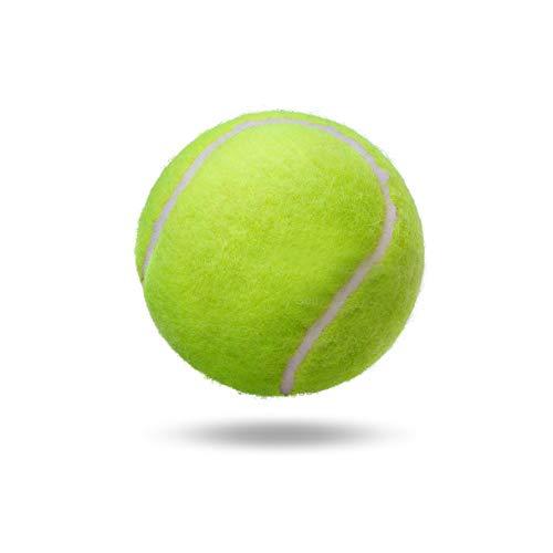KEVENZ Tennis Balls Child or Adult Training Tennis Balls Patent Yellow Tennis Ball (6 Pack)