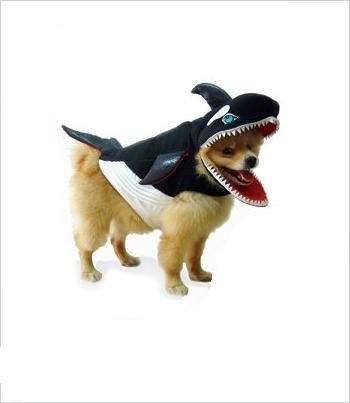 Dog Orca Costume (Killer Whale Deluxe Padded Costume For Dogs by Pupple Love (Size 5 (14