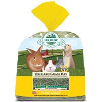 Oxbow Animal Health Orchard Grass Hay For Pets, 50-Pound (50 Lb Bag Of Guinea Pig Food)