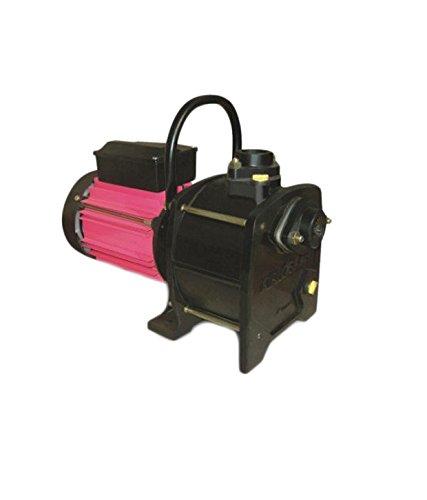 Kirloskar 1 HP Shallow Well Jet Pump Single Phase Lifter 100, Multicolour