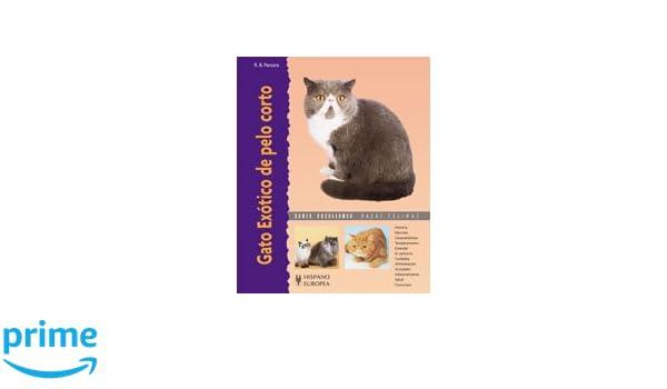 Gato Exotico De Pelo Corto/ Exotic Short Hair Cat (Spanish Edition): Roy B. Parsons: 9788425517112: Amazon.com: Books