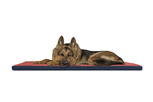 FurHaven Pet Kennel Pad | Reversible Two-Tone Water-Resistant Crate or Kennel Pad Pet Bed for Dogs & Cats, Blue/Poppy, X-Large