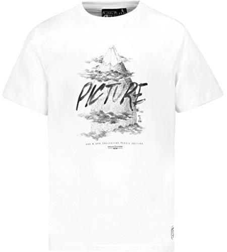 Picture Organic Clothing D & S Pencil Men Tee Shirt mit Druck Organic Cotton NEU, Größe:L