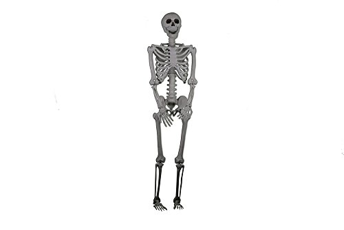 [Life-Sized Realistic Posable Skeleton Prop 5 Foot, Halloween Decoration] (Hanging Halloween Props)
