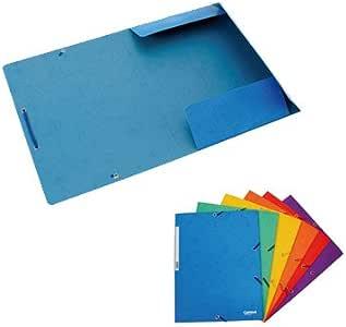 Plus Office 180577 - Pack de 12 carpetas, A4, 24.5 x 32 cm, color ...