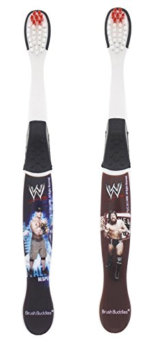 wwe-john-cena-cm-punk-and-daniel-bryan-toothbrushes-2-pack-assorted-styles-and-colors-wrestlers-may-
