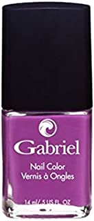 product image for Gabriel Cosmetics Non Toxic Nail Polish Reverie .5 Ounce - Purple