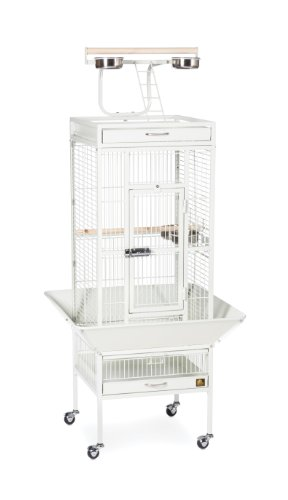 Prevue Hendryx 3151C Pet Products Wrought Iron Select Bird Cage, Chalk White