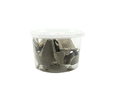 """1/4"""" Banded Crickets (120 Count) from Josh's Frogs"""