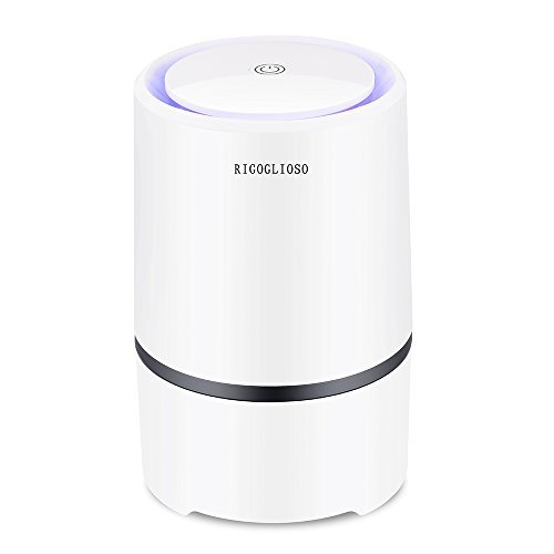 RIGOGLIOSO Portable Air Purifier,Desktop Anion Sterilization Air Purifier with True HEPA Filter, Air lonizer, Air Cleaner, True Hepa Homes Purifier Remove Cigarette Smoke, Odor Smell, Bacteria.