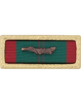 R-U111, Vietnam Civil Action w/Palm Army Unit Citation Ribbon & Frame RIBBONS & MOUNTS