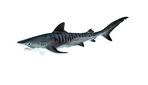 (Safari Ltd  Monterey Bay Aquarium Sea Life Tiger Shark)