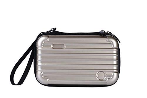 Ambermier Travel Makeup Case, Professional Cosmetic Makeup Bag Organizer,Accessories Case, Waterproof, Perfect for Cosmetics, Makeup brushes, Cards etc. Sliver
