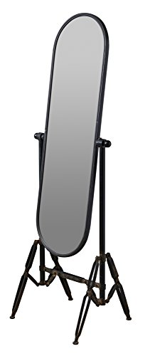 Cooper Classics 9640 Carlten Black Industrial Floor Mirror, One Size - Mirror Floor Mirror Cheval Mirror - mirrors-bedroom-decor, bedroom-decor, bedroom - 313GqJZ3MqL -
