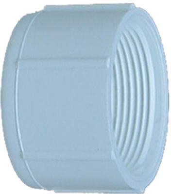 (Genova Products 30165 PVC Pressure Pipe Cap, White PVC, 1/2-In. - Quantity 10 )
