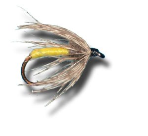 Partridge & Yellow Wet Fly Fly Fishing Fly - Size 14 - 3 Pack (Partridge Fishing Fly)