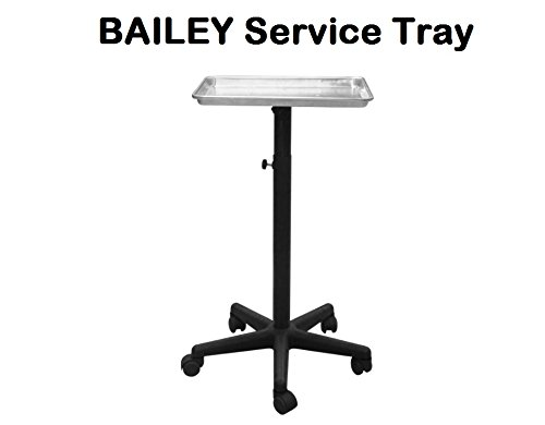 BAILEY Rolling Salon Service Tray- Silver, Perfect for salon, barbershop, spa, hair coloring, tattoo studio to keep your tools at desirable height