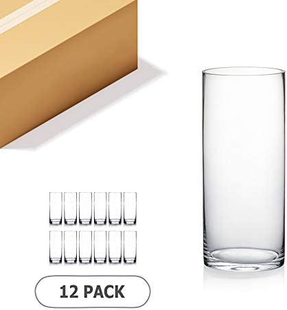WGV Cylinder Vase Bulk, Diameter 5 , Height 12 , Clear Glass Floral Planter Container, Tall Centerpiece Arrangement for Wedding Party Event Home Office Decor, 12 Pieces