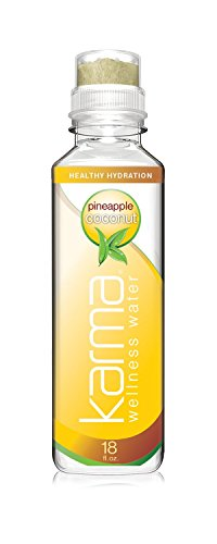 Karma Wellness Flavored Water, Pineapple Coconut, 18 Fl Oz (Pack of 12), Natural Lift, Low Calorie, Refreshing Vitamin Flavored Water with Antioxidants